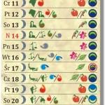Kalendarz Biodynamiczny 2013 – Lipiec