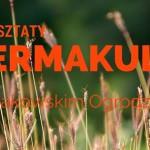 Warsztaty Permakultury w Krakowskim Ogrodzie Społecznym