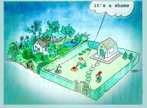 trawnik vs ogród naturalny