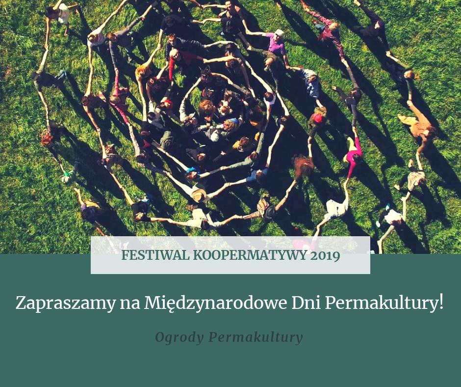festiwal koopermatywy