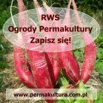 rws ogrody permakultury